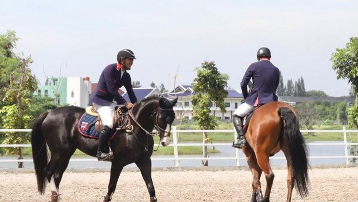 Equinara Horse Sports