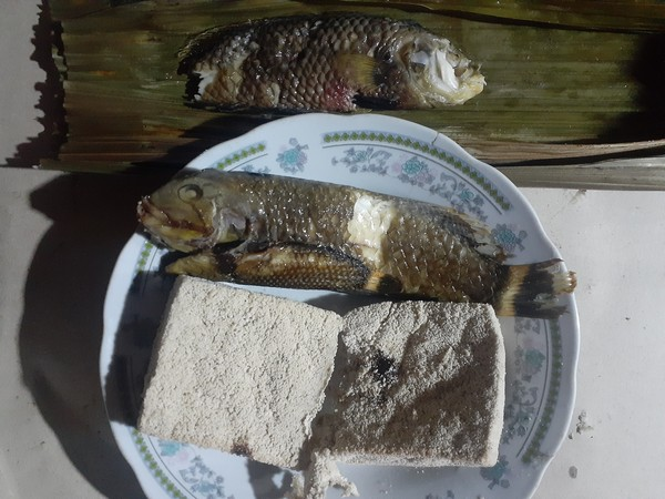 Disebut ikan pasir karena ikan ini suka bersembunyi dengan cara unik, suka membenamkan diri di dalam pasir saat ada predator. Ikan ini sebenarnya adalah ikan subtropis.
