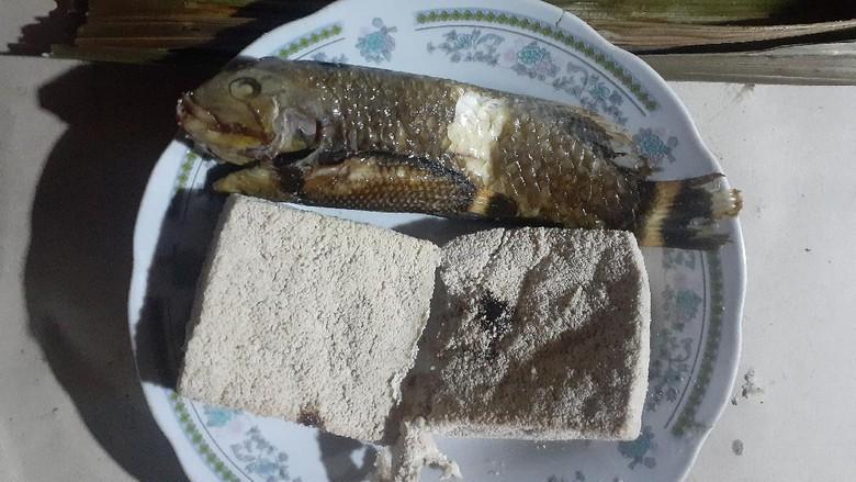 Ikan Pasir Nabire