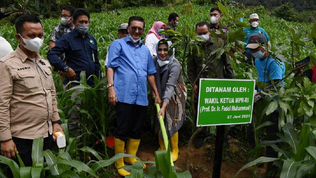 Wakil Ketua MPR Ajak Masyarakat Gorontalo Ciptakan Agrowisata Buah
