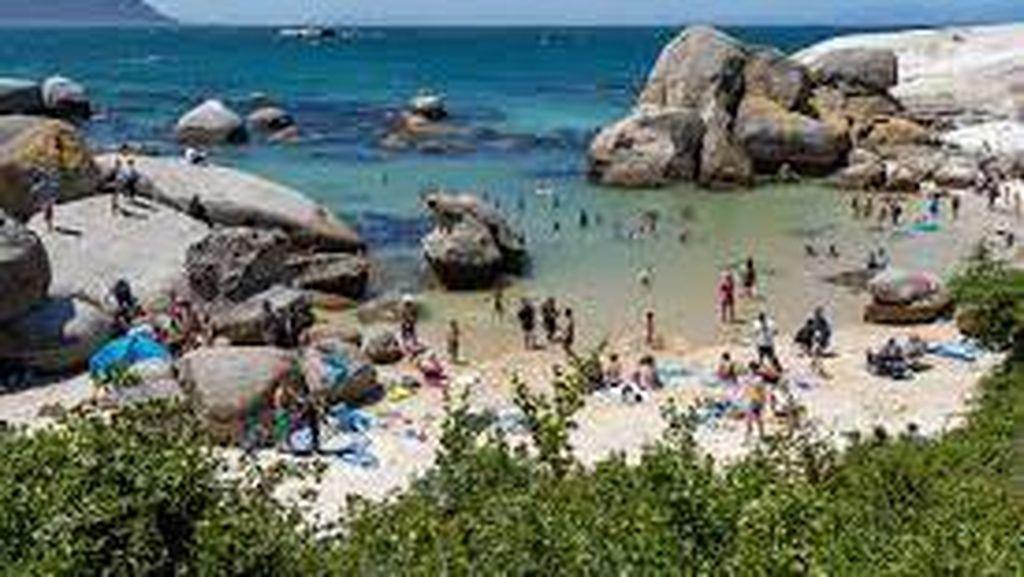 Afrika Selatan Tutup Pantai untuk Selidiki Polusi di Laut Imbas Kerusuhan