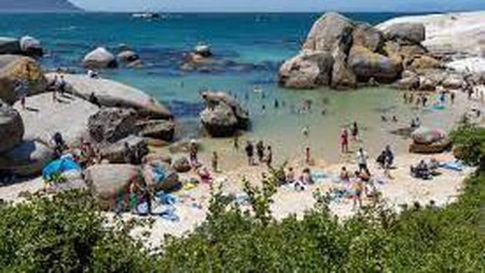 Pantai Boulders, Afrika Selatan