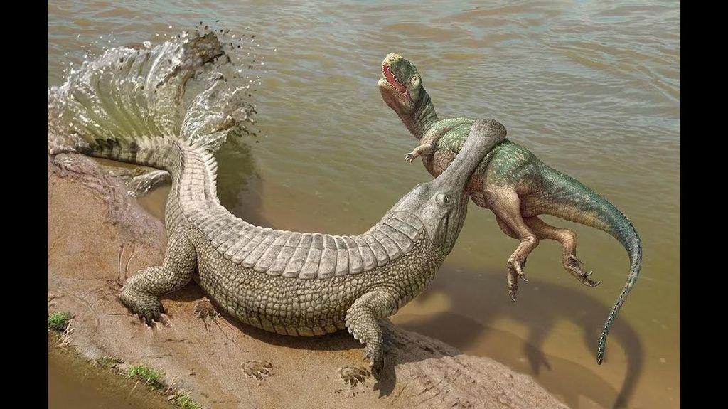 Ngeri, Ada Buaya Raksasa yang Bisa Makan Dinosaurus