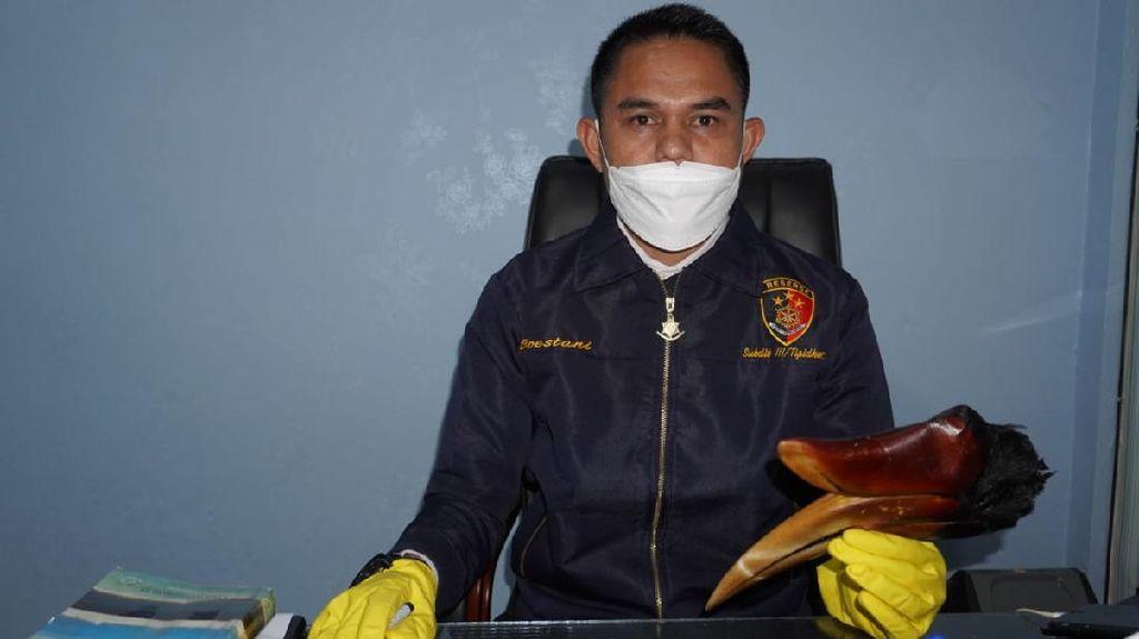 Pamer Burung Rangkong Hasil Buruan di Medsos, Pria Aceh Ditangkap Polisi