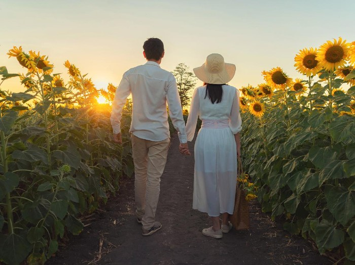 Rear of beauty woman in white dress holding hands a couple in sunflower field at evening. Follow me