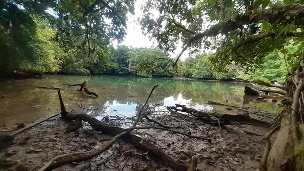 Pulau Kapotar merupakan pulau kecil memanjang di Kepulauan Moora, kawasan Teluk Cendrawasih, Nabire, Papua. Di pulau ini ada Telaga Mamberkora yang unik dan cantik. (Hari Suroto/Istimewa)