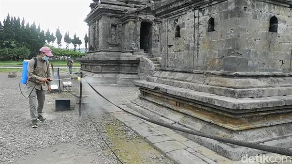 Penyemprotan disinfektan pun dilakukan di semua obyek wisata di Dieng, termasuk komplek Candi Arjuna.