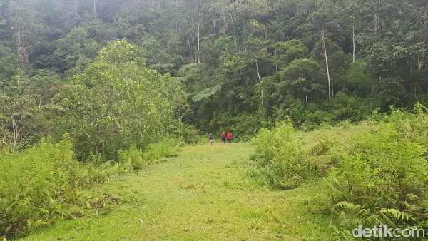 Akses jalan dari pemukiman warga ke kawasan wisata Sarambu Sollokan cukup menantang. Sebagian besar ditumbuhi belukar, dengan permukaan jalan yang licin dan becek. Pada sejumlah titik, terlihat permukaan tanah yang terbongkar.