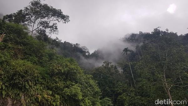 Perjalanan menuju Sarambu Sollokan dengan berjalan kaki menempih jarak sejauh kurang lebih dua kilometer, masuk ke kawasan hutan hujan tropis. Sempat terpikir untuk kembali, namun tujuan kami sudah tidak jauh lagi.