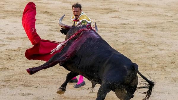 Matador adalah sebuah pertunjukan pertarungan antara manusia melawan banteng yang dikemas sedemikian rupa sehingga seakan-akan orang yang melawan banteng.