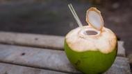 Pakar UGM Sebut Air Kelapa, Jeruk Nipis dan Garam Tak Hilangkan Virus COVID-19