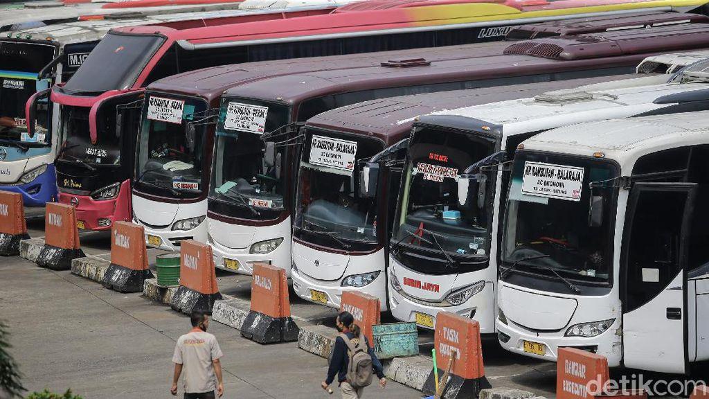 Langgar Aturan PPKM Darurat, 36 Bus Ditilang Polda Metro Jaya
