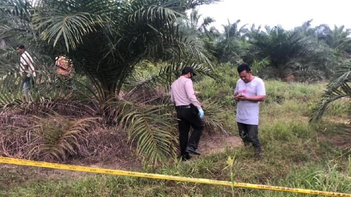 Polisi di TKP penemuan tulang belulang di Riau (dok. polisi)