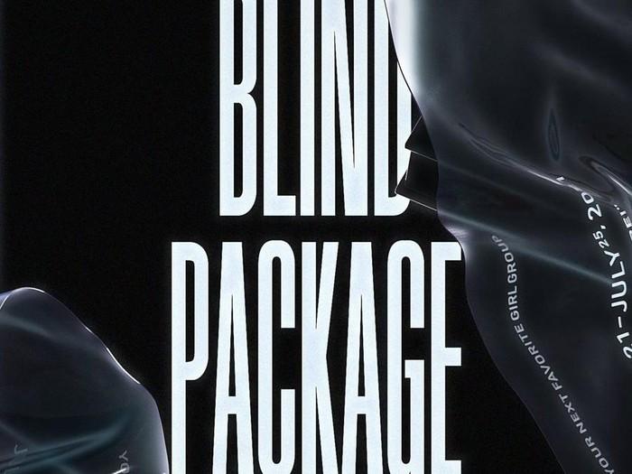 Blind Package