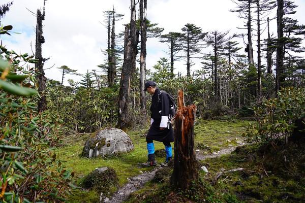 Raja Jigme juga melakukan pemantauan hutan selagi ke area terpencil. (His Majesty King Jigme Khesar Namgyel Wangchuck/Facebook)