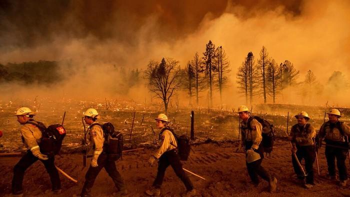 Penampakan Kobaran Api yang Lalap Hutan di California
