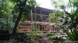 Kampung Pepohonan 99 Hidden Gem di Depok buat Rileks Sejenak