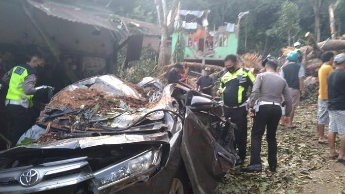 Pohon tumbang timpa mobil di Bengkulu, 2 orang tewas