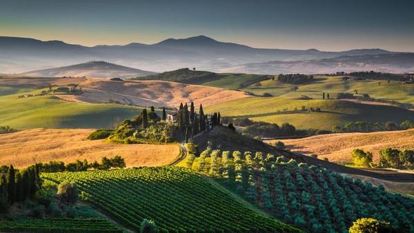Tuscany memiliki predikat sebagai kota palung romantis di Italia. Kota ini memiliki museum dengan koleksi seni yang masyur, juga gereja tua, dan tanahnya subur dengan banyak kebun anggur dan zaitun. (Getty Images/iStockphoto/bluejayphoto)