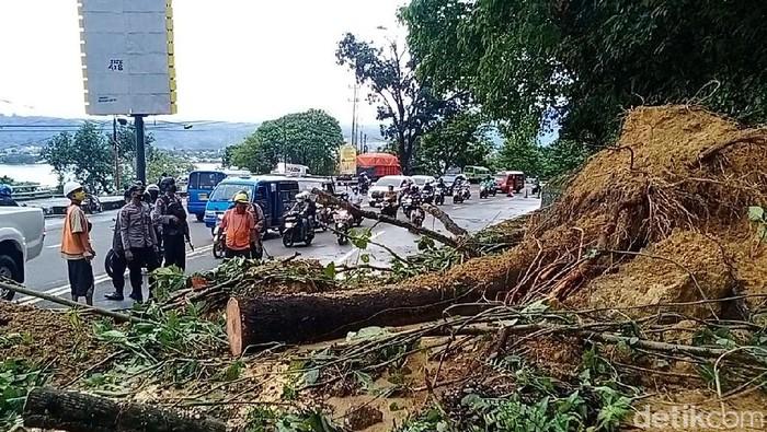 Wilayah terkena longsor di Ambon (Muslimin Abbas/detikcom).