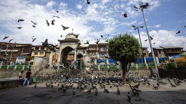 Ada ratusan merpati yang bermain di halaman masjid dan menarik perhatian pengunjung.