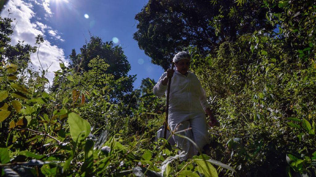 Saat Nakes di Kolombia Lewati Hutan Belantara Demi Vaksinasi Warga