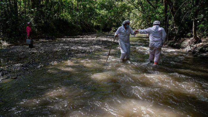 Jalan terjal dihadapi para nakes di Kolombia demi bisa berikan vaksin COVID-19 kepada warganya yang hidup di pedalaman. Salah satunya menembus hutan belantara.