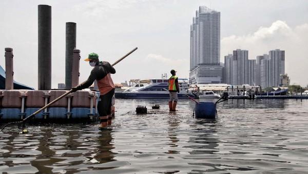 Satelit dan sensor berbasis darat mencatat sebagian Jakarta Utara mengalami penurunan puluhan milimeter per tahun. Pradita Utama/detikcom.
