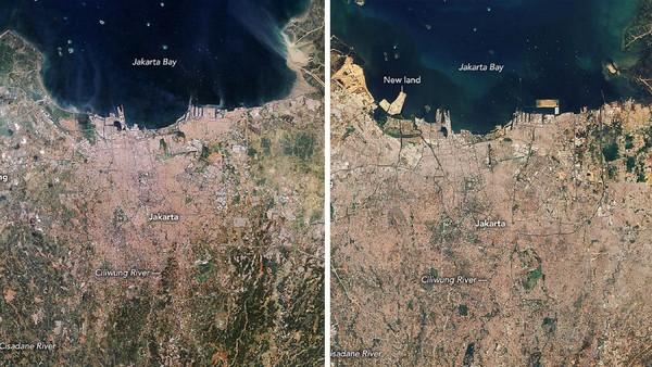 Nah, banjir menjadi semakin parah dengan perubahan fungsi area di pinggir sungai. Perubahan itu dicatat NASA lewat citra dari luar angkasa atau lndsat. Perbandingan landsat Jakarta pada tahun 1990 dan 2020 sangat mencolok. Dari foto itu nampak jelas evolusi Jakarta dalam tempo tiga dekade terakhir. Dok. NASA