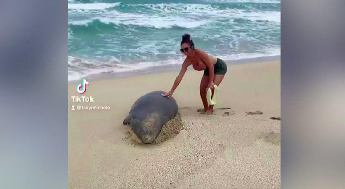 wanita pegang anjing laut langka