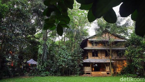Detikers juga bisa mengajak keluarga untuk menikmati pepohonan hijau di sini.