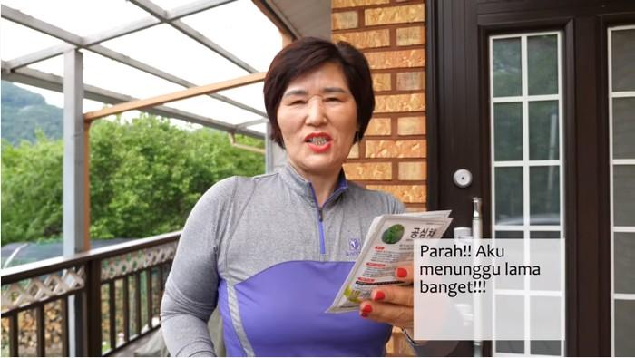 Emak-emak Korea Tanam dan Masak Kangkung Sendiri