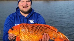 Foto: Wujud Ikan Berukuran Jumbo di Danau Minnesota