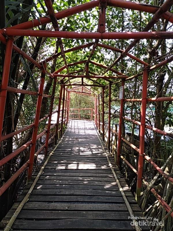 Menjajaki jalan bambu di kelilingi hutan bakau menjadi pengalaman yang mengasyikan