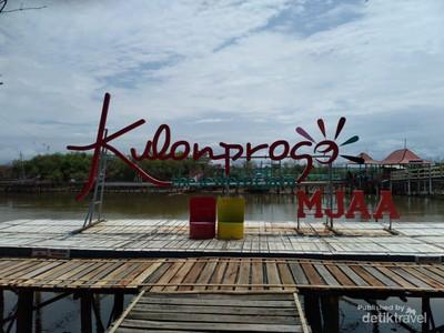 Hutan Bakau di Kulon Progo yang Disulap Jadi Tempat Wisata