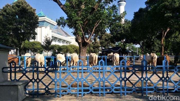 Masjid Al Akbar Surabaya tidak mengelar salat Idul Adha 1442 Hijriah untuk umum. Salat hanya diikuti 75 orang internal.