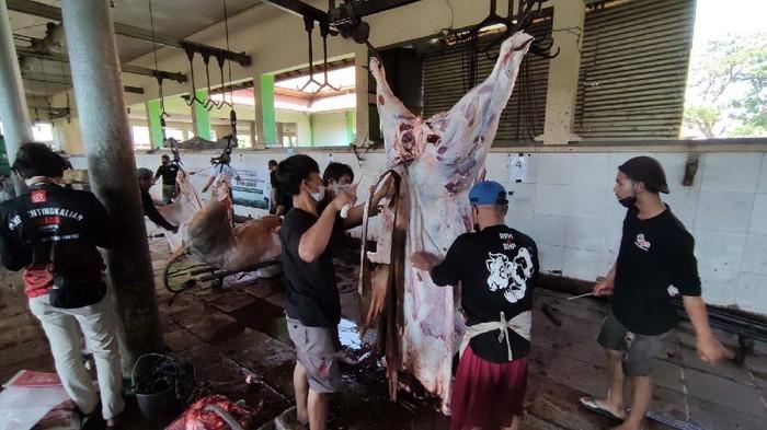 Pada hari raya Idul Adha ini, banyak hewan kurban yang disembelih di Rumah Pemotongan Hewan (RPH). Salah satunya di RPH Penggaron Semarang, Jateng.