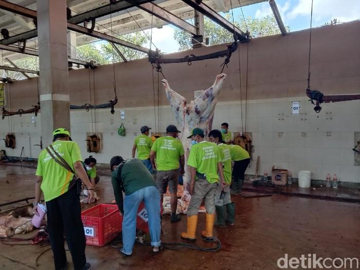Rumah Potong Hewan (RPH) Pegirian, Surabaya memotong 240 hewan kurban dalam Idul Adha tahun ini. Naik 100 persen jika dibandingkan tahun lalu.