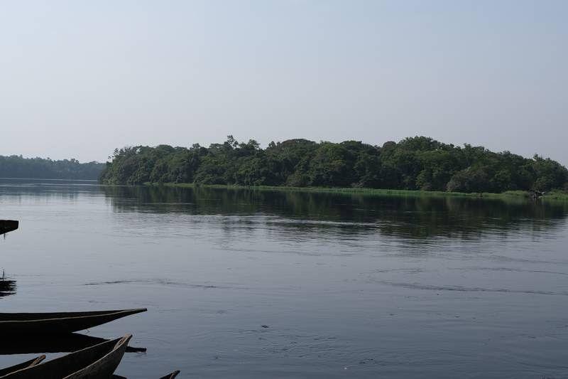 Taman Nasional Salonga di Kongo