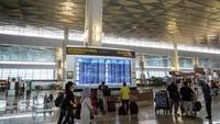 Warga China Berbondong-bondong Tinggalkan RI, Covid di Iran Menggila