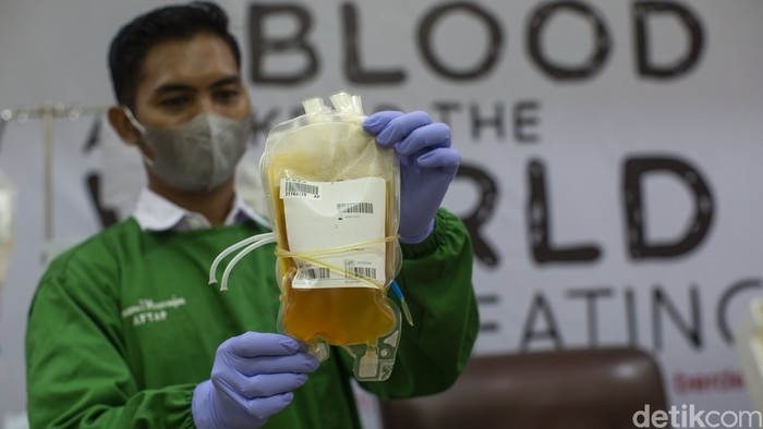 PMI terus mengajak penyintas COVID-19 untuk mendonorkan darahnya sebagai bagian dari usaha untuk menyembuhkan pasien yang masih positif.