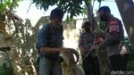 Berkah Pedagang di Garut Imbas Uang Kurban Dimakan Rayap