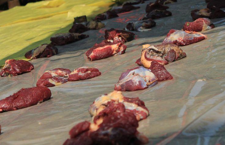 Hukum Berkurban dan Memberikan Daging Kurban Bagi Umat Non Muslim