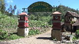 Penutupan Pendakian Gunung Semeru dan Wisata Bromo Diperpanjang