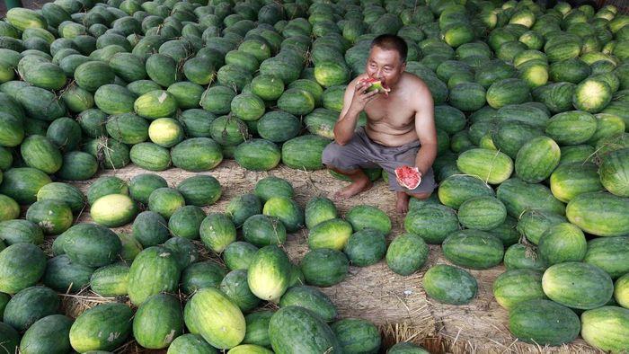 Mengonsumsi makanan sehat jadi kunci utama perkuat imun tubuh guna lawan virus Corona. Ini deretan buah yang bagus untuk dikonsumsi saat positif COVID-19.