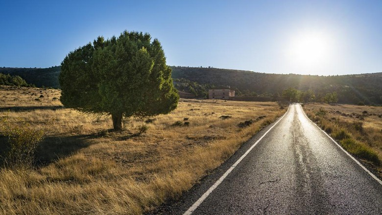 Pinares de Rodeno pine forest in Sierra de Albarracin of Teruel Aragon in Spain