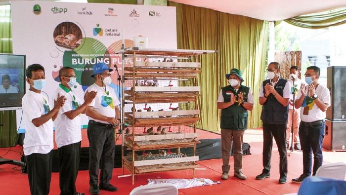 Gubernur Jabar Ridwan Kamil meluncurkan program petani milenial burung puyuh di Bandung.