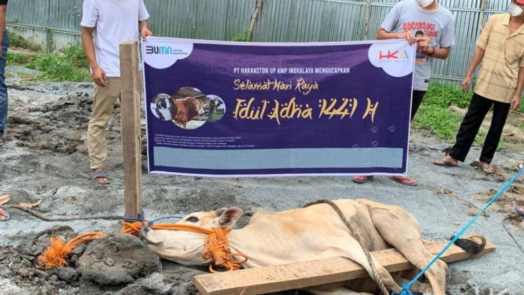 Hutama Karya Kurban 14 Sapi dan 45 Kambing untuk Warga Terdampak COVID-19