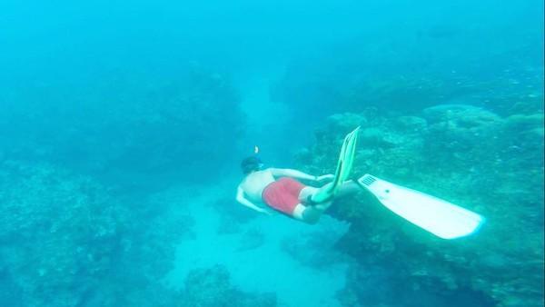Sebagai anak konglomerat, Oliver sudah liburan keliling dunia sedari kecil. Dia suka sekali olahraga air. Ini fotonya saat snorkeling menyelami keindahan laut di Jamaika. (Instagram/Oliver Daemen)