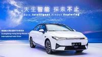 Cuma Rp 350 Jutaan, Mobil Listrik China Ini Siap Jegal Tesla